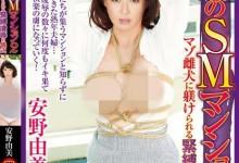 安野由美(あんのゆみ)个人评价最高的作品【CETD-261】时长类型和演员