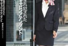 希志爱野(希志あいの)个人评价最高的作品【IPZ-522】时长类型和演员
