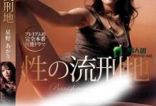 星野明(星野あかり)个人评价最高的作品【PGD-060】时长类型和演员