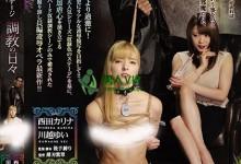 西田卡莉娜(西田カリナ)个人评价最高的作品【RBD-984】时长类型和演员