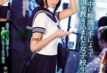 凑莉久(上村陽菜)个人评价最高的作品【TEAM-074】时长类型和演员